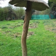 Giant mushroom 2 - wood sculpture & garden art