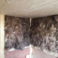 12-garden-sauna-room-brighton
