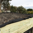 Green roof with soil