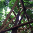 Tree house roof closeup