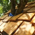 Tree house roof shingles
