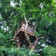 The tree house den