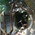 Tree house entrance with door open