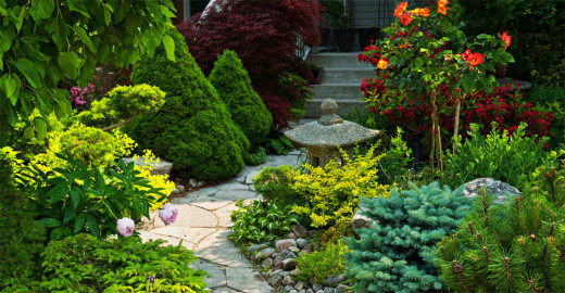 Treegarden offer landscaping & gardening services